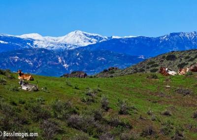 14 Ventura County Scenics