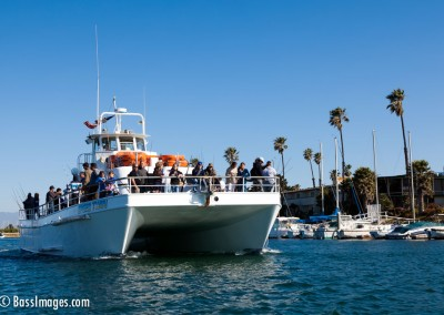 BoatParade_5466