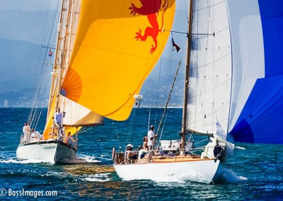 McNish Yacht Race