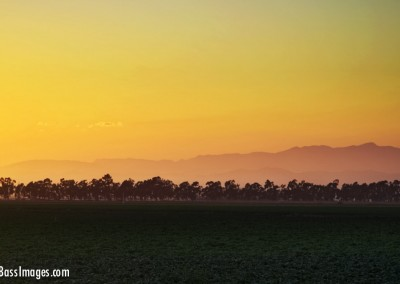 oxnard farm sunset