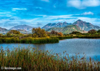 Camarillo settling pond-1