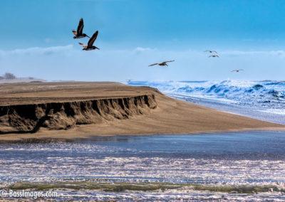 Ocean breech Santa Clara estuary-1